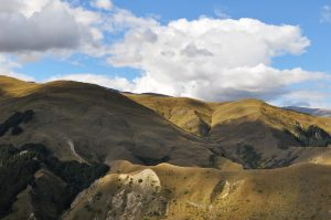 High Country Arrowtown
